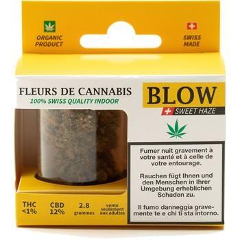 Cannabis-Blüten Gelb