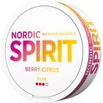 Nordic Spirit Slim Snus