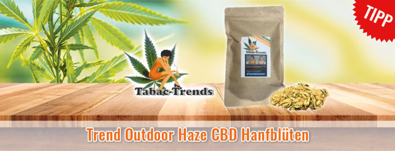Trend Outdoor Haze CBD Hanfblüten